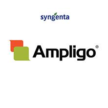 AMPLIGO1