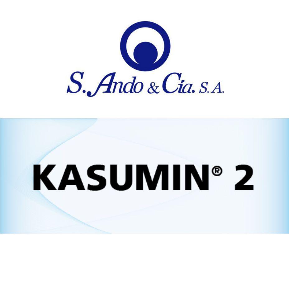 Ando - Kasumin