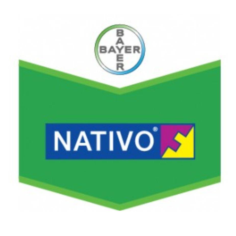 Bayer - Nativo
