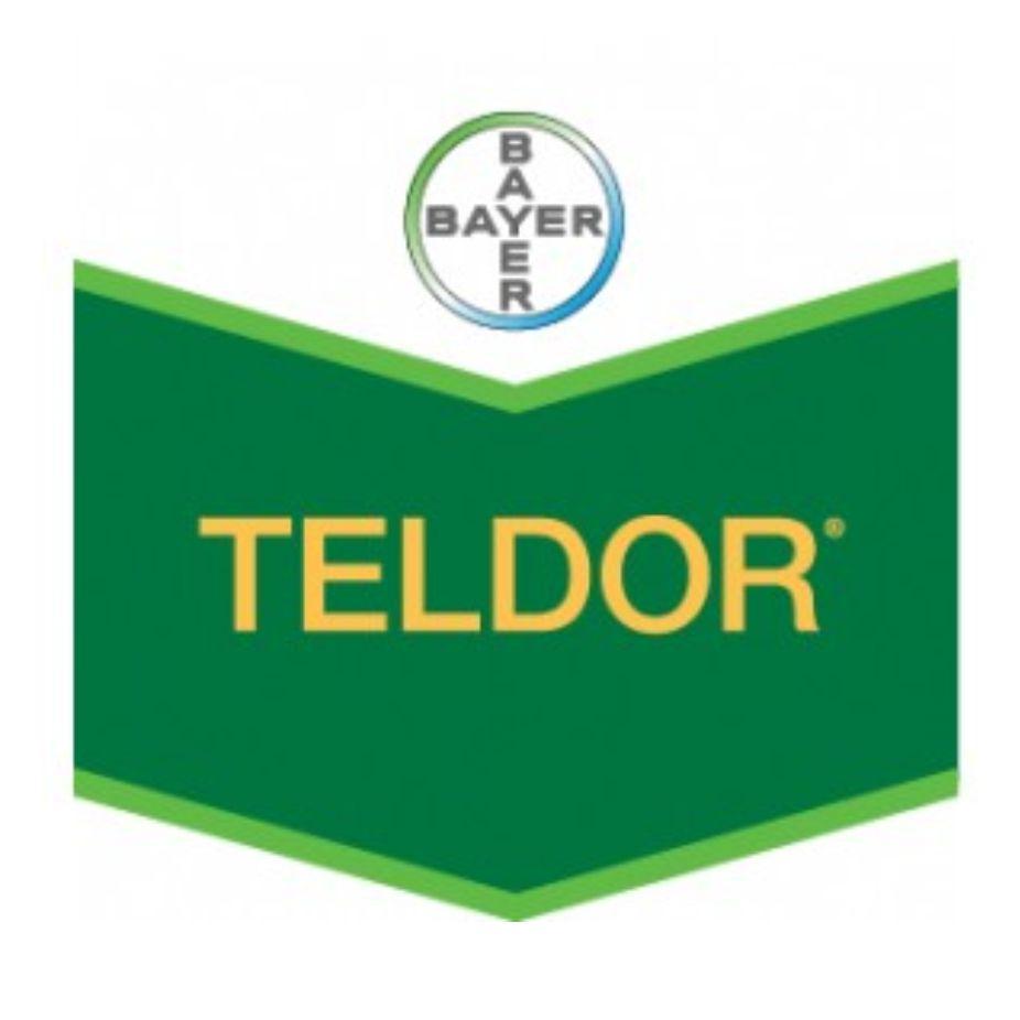 Bayer - Teldor