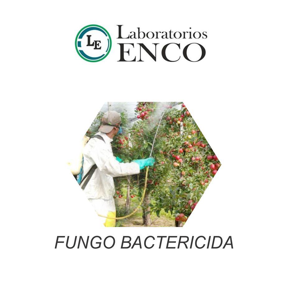 Enco - Fungo Bactericida