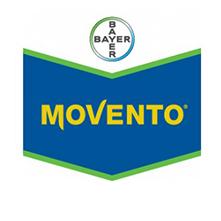 MOVENTO1