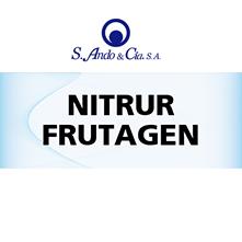 NITRUR1
